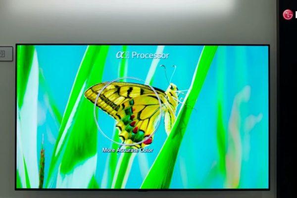 LG OLED TV in kenya